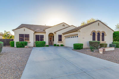 Chandler Single Family Home For Sale: 6972 S Roger Way
