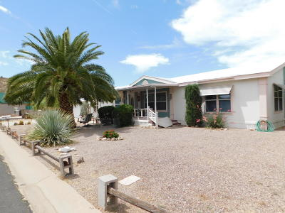 Queen Valley AZ Mobile/Manufactured For Sale: $175,000