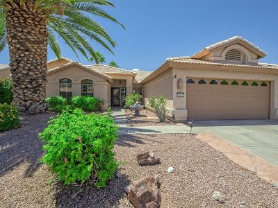 Goodyear Single Family Home For Sale: 4002 N 152nd Drive
