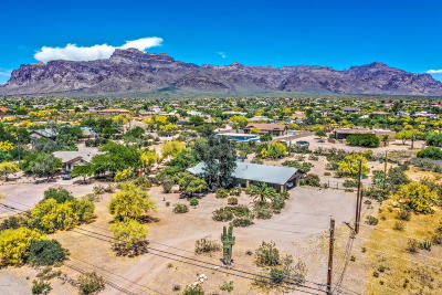 Apache Junction Single Family Home For Sale: 2051 S Mountain View Road