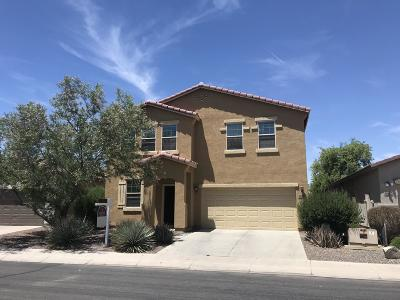 Maricopa Single Family Home For Sale: 18426 N Lariat Road