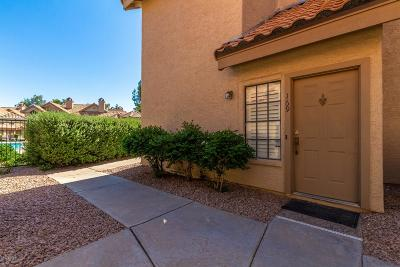 Mesa Condo/Townhouse For Sale: 1001 N Pasadena Street #169