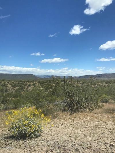 Residential Lots & Land For Sale: 0xxxx Cow Creek Road