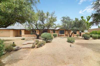 Tempe Single Family Home For Sale: 214 W Greentree Drive