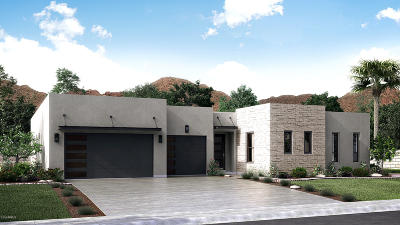 Phoenix Single Family Home For Sale: 2025 E Solar Drive