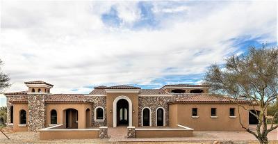 Maricopa County Single Family Home For Sale: 7254 E Sonoran Trail