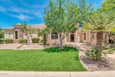 Gilbert Single Family Home For Sale: 2838 E Sandy Court