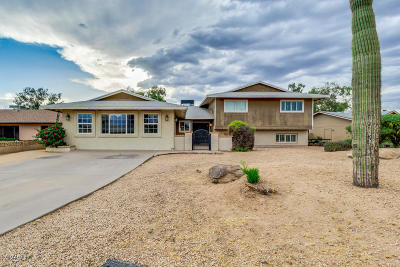 Tempe Single Family Home For Sale: 1026 E Carson Drive