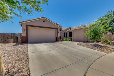 Maricopa Single Family Home For Sale: 18315 N Falcon Lane
