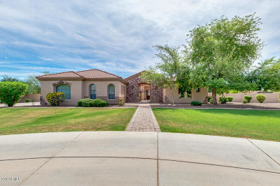 Queen Creek Single Family Home For Sale: 24543 S 195th Street