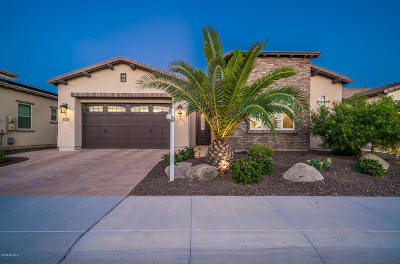 San Tan Valley Single Family Home For Sale: 37285 N Wild Barley Path