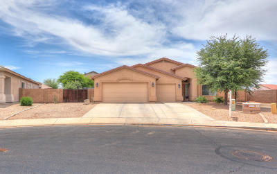 Maricopa Single Family Home For Sale: 43337 W Askew Drive