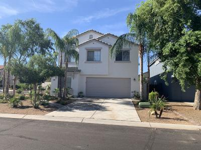 Queen Creek Single Family Home For Sale: 533 E Maddison Street
