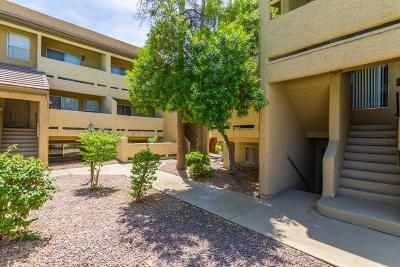Apartment For Sale: 1331 W Baseline Road #230