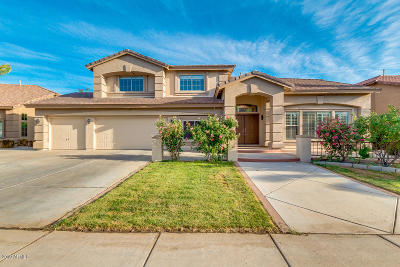 Chandler Single Family Home For Sale: 1695 E Mead Drive