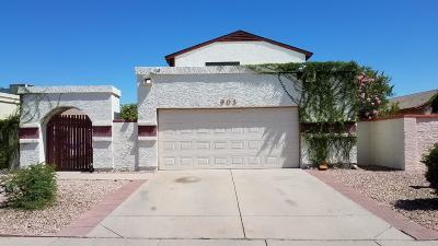 Phoenix Single Family Home For Sale: 903 E Escuda Drive