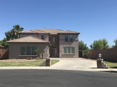 Gilbert Single Family Home For Sale: 3482 E Geronimo Court