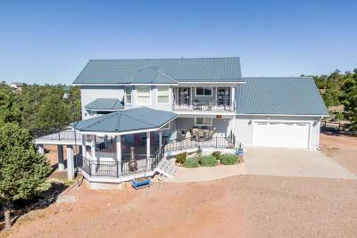 Overgaard AZ Single Family Home For Sale: $460,000