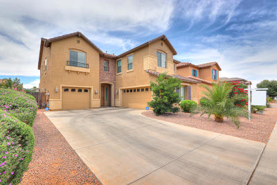 Maricopa Single Family Home For Sale: 42197 W Centennial Court