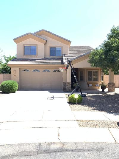 Douglas  Single Family Home For Sale: 3479 N Placita Herradura