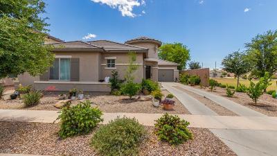 Chandler AZ Single Family Home For Sale: $326,000
