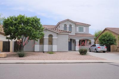 Queen Creek Single Family Home For Sale: 21421 E Alyssa Road
