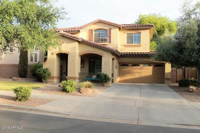 Queen Creek Single Family Home For Sale: 18961 E Lark Drive