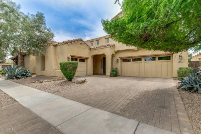 Gilbert Single Family Home For Sale: 3541 E Shannon Street