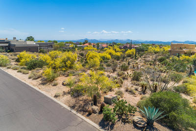 Scottsdale Residential Lots & Land For Sale: 23216 N 95th Street