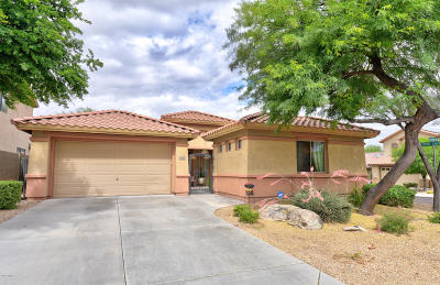Single Family Home For Sale: 39626 N Graham Way