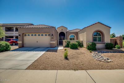 Queen Creek Single Family Home For Sale: 23210 S 222nd Way