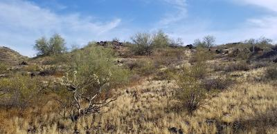 Peoria Residential Lots & Land For Sale: 7229 W Miner Trail