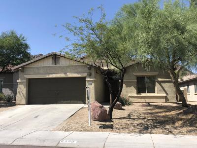 Peoria Single Family Home For Sale: 8450 W Quail Track Drive
