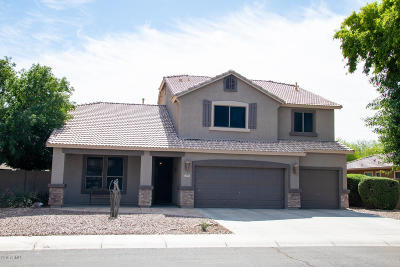 Chandler Single Family Home For Sale: 6971 S Bell Place