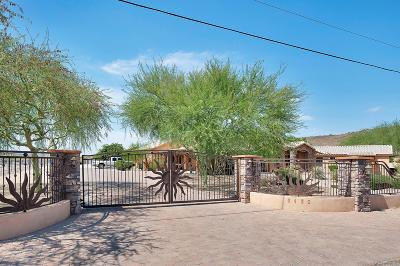 Single Family Home For Sale: 6430 W Pinnacle Peak Road