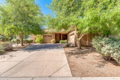Chandler Single Family Home For Sale: 1414 E Kesler Lane