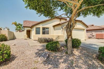 Gilbert Single Family Home For Sale: 3228 E Sandy Way
