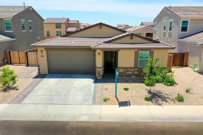 Maricopa Single Family Home For Sale: 40021 W Brandt Drive