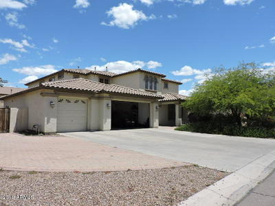 Laveen Single Family Home For Sale: 5220 W Siesta Way