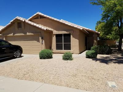 Chandler Rental For Rent: 786 E Park Avenue