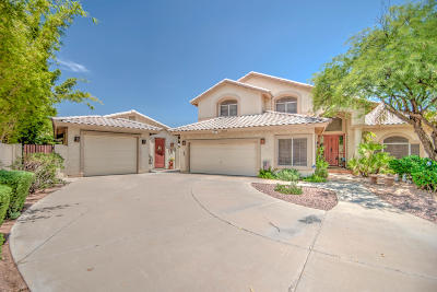 Mesa Single Family Home For Sale: 4628 E Enrose Circle