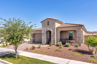 Buckeye Single Family Home For Sale: 20458 W Delaney Drive