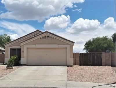Phoenix Single Family Home For Sale: 2905 N 89th Drive