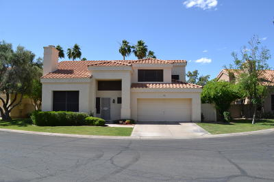 Tempe Single Family Home For Sale: 36 W Greentree Drive