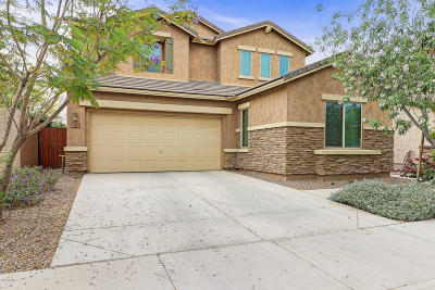 Single Family Home For Sale: 4237 S Red Rock Street