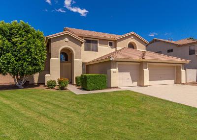 Mesa Single Family Home For Sale: 1653 S Citrus Cove