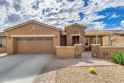 Goodyear Single Family Home For Sale: 16544 S 179th Lane