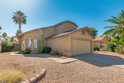 Phoenix Single Family Home For Sale: 19210 N 31st St Street