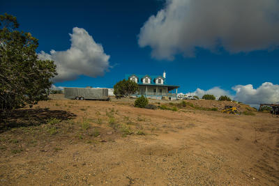 Chino Valley Single Family Home For Sale: 6240 N State Route 89