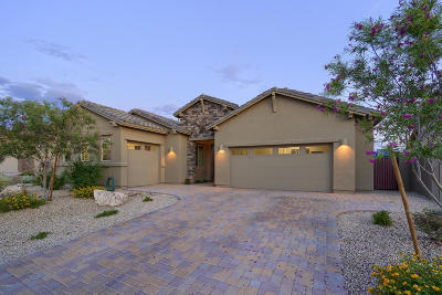 Cave Creek Single Family Home For Sale: 6113 E Bramble Berry Lane